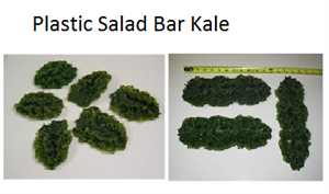 Replica Kale For Salad Bar Display. Plastic Kale For Fake Food Display, Artificial Kale In Stock.