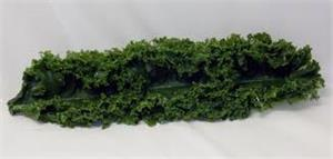 Plastic Kale In Stock. Replica kale for fake kale in salad bar display. Artificial Kale Strips In Stock.