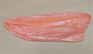 Replica Salmon Fillet For Display. Fake Salmon for restaurant fake food display.